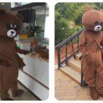 Mascot gau nau gau brown-6