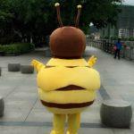 mascon ong vang